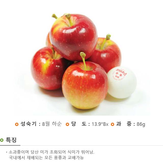 201701_경산묘목_루비에스.jpg